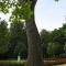 Keszthely - Látnivalók - Helikon-emlékmű, Helikon park