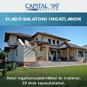 Capital 99 ingatlan
