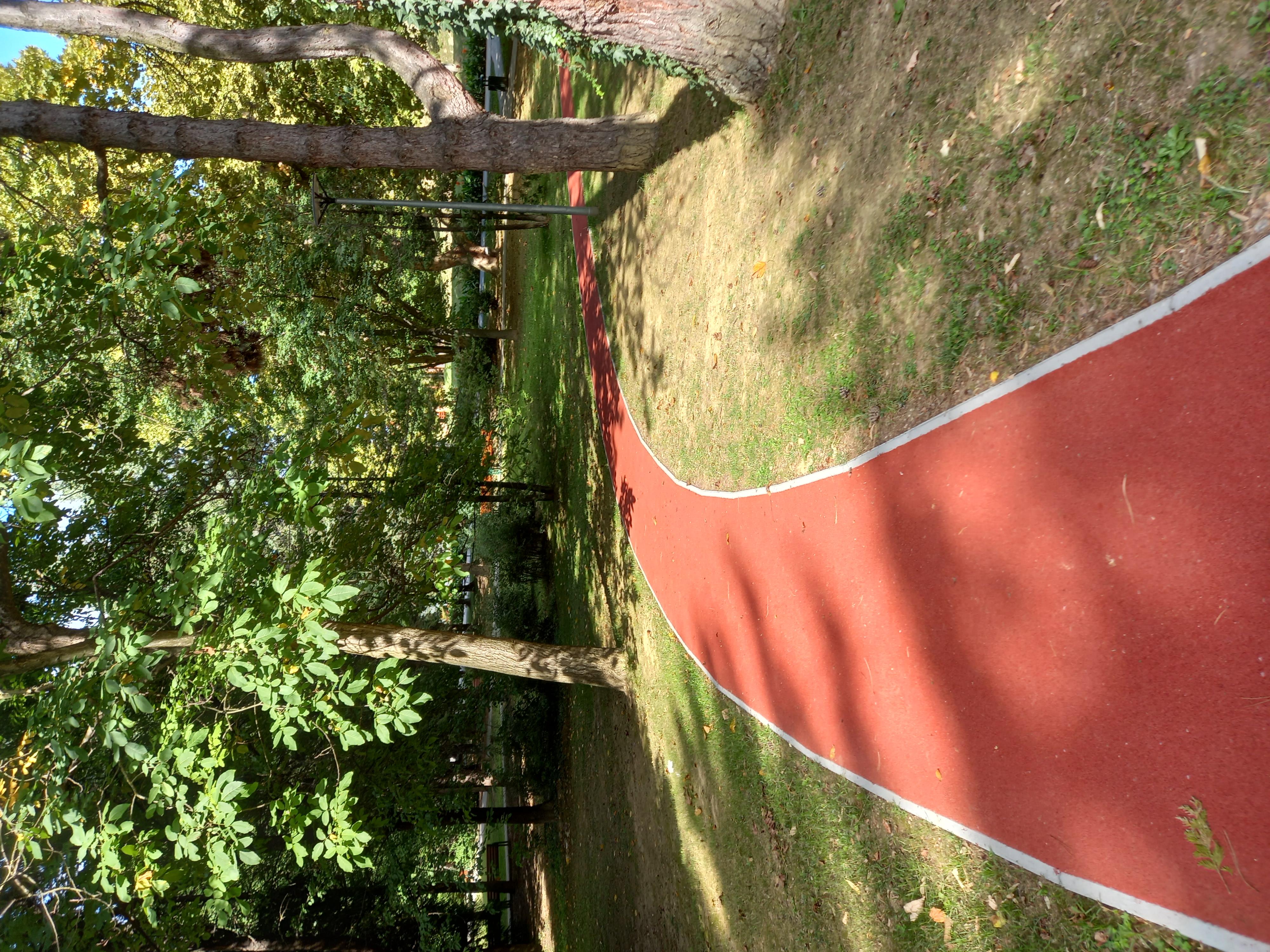 Arboretum - gardens