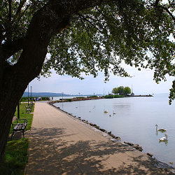 Balatonufer und Badeinsel