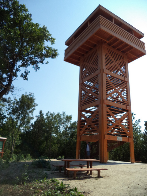 Pad-kövi lookout tower
