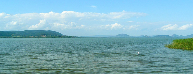 balaton women Balaton is central europe's largest freshwater lake, the sheer vastness giving   tagore setany (promenade) running along the banks of lake balaton  press  trust of india india's first woman ias officer post-independence,.