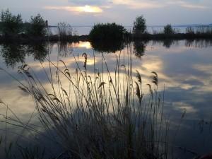 lake-balaton-112166_1920