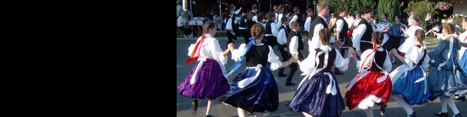 <div><h3>Gyenesdiás</h3><p><strong>Programok 2014</strong> - Hagyományos rendezvényeink között gasztronómiai fesztiválok, folklór programok, sport rendezvények, kulturális- és gyerekprogramok, zenés mulatságok szerepelnek</p></div>