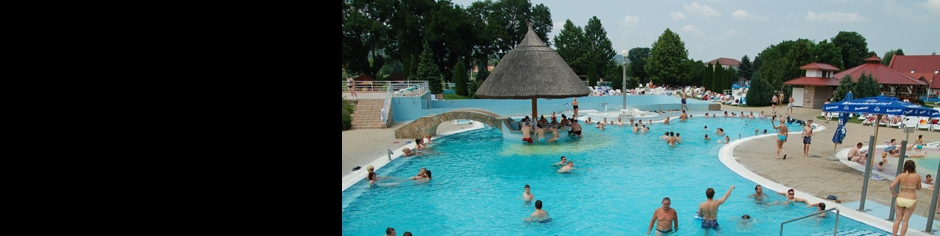 <div><h3>Kehidakustány</h3><p><strong>Endless relaxing...</strong> - Come to Kehida, and we'll show you! You can spend very pleasant hours sitting in the outdoor thermal pool - even in winter...</p></div>