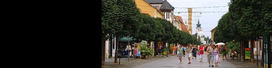 <div><h3>Keszthely</h3><p><strong>Sétálóutca</strong> - Tegyen egy sétát Keszthely legelőkelőbb részén, melynek egykori pompájában ma is gyönyörködhet egy-egy kávézó vagy étterem teraszáról nézve </p></div>